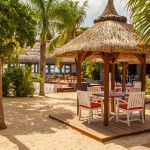 Pomelo Restaurant 2
